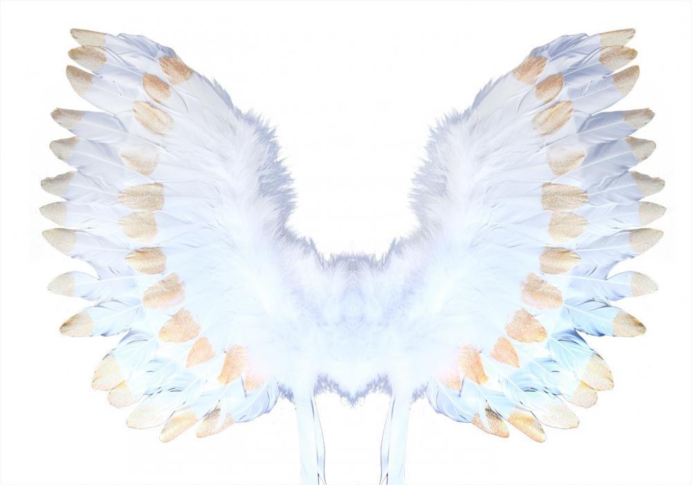 Anjelské krídla s perím, bielozlaté