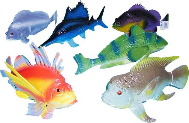 Ryba tropická, 24-36cm